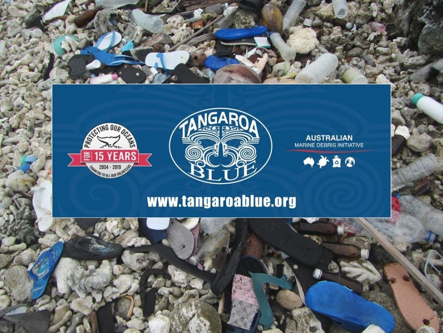 Tangaroa Workshop Marine Debris
